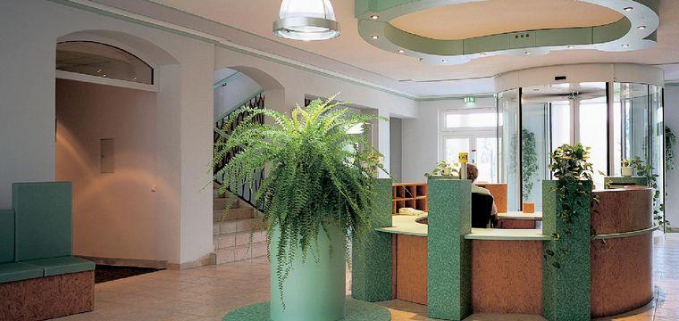 zimmerpflanzen privathaus licht. Black Bedroom Furniture Sets. Home Design Ideas